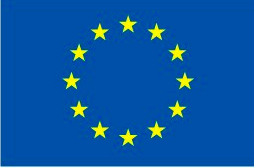 European flag simple
